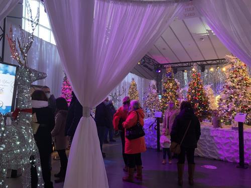 Gallery Image Guests_at_Winter_Wonderland.jpg