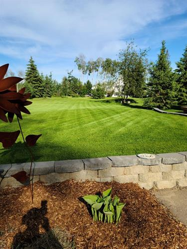Your yard could look like this!