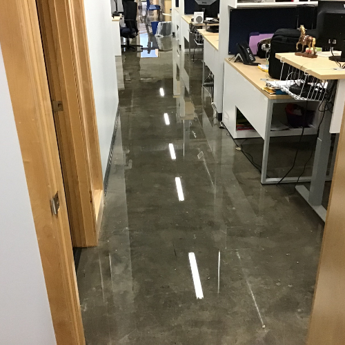 Standing water in offices.