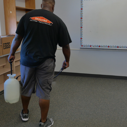 Cleaning and sanitizing school carpets.