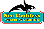 Sea Goddess Whale Watching