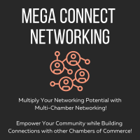 Virtual Mega Connect Multi-Chamber Networking Event