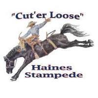 HAINES STAMPEDE