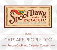 Calling all Cat Lovers...