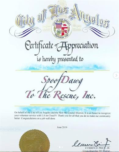 Certificate of Appreciation from LA County for our work helping provide pet food to the homeless community with food for their pets thru LA on Cloud 9