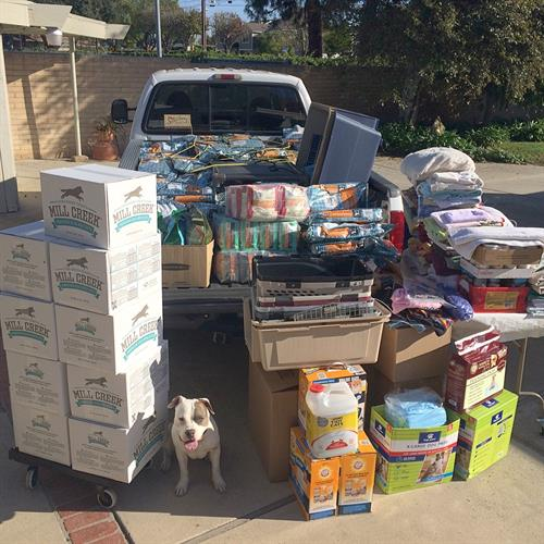 All donated items to Fill the Truck for animal rescues in need