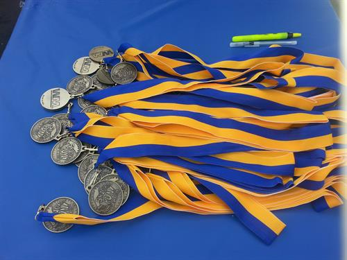 Custom medals - So many choices  and so many ribbon colors.