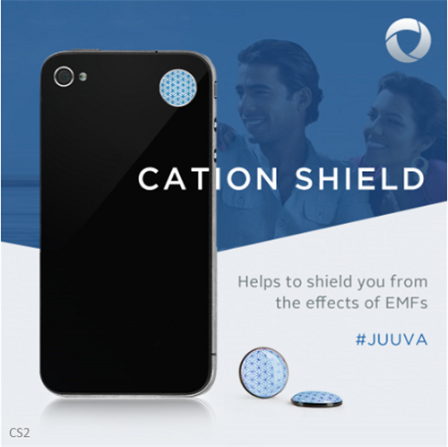 Gallery Image cad-shield.png