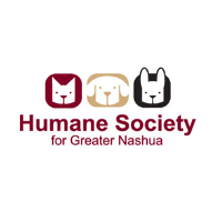 Local National Honor Society Creates a New Event for HSFN's Animals