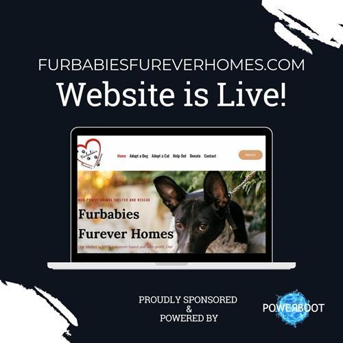 Proud Sponsor of the Furbabies Furever Homes' website!