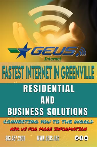 GEUS Internet for Business and Home