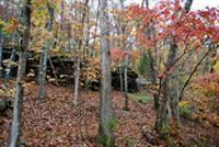Best fall colors