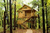 Bungalow Treehouse