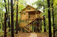 Bungalow Treehouse