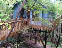 Hidden Oak Treehouse