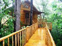 Lofty Lookout Treehouse