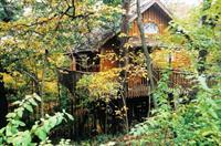 Hideaway Treehouse