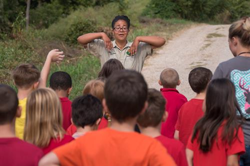 A guided tour conducted by a knowledgeable intern at Turpentine Creek Wildlife Refuge in Eureka Springs, Arkansas.