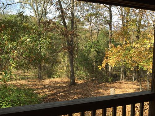 Deck View at Country Rose