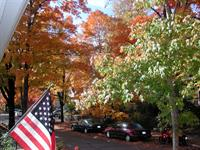 Fall color is magnifient!