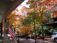 More fall color!