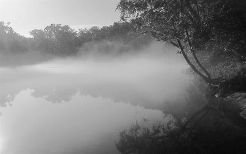 White River Morning Fog