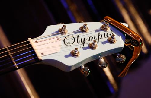Products- Marketing Olympus Guitars