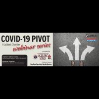 Covid 19 Pivot Webinar Series