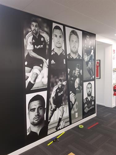 Wallpaper at Waikato Chiefs HQ