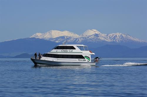 Cruise to the Maori Rock Carvings on Lake Taupo