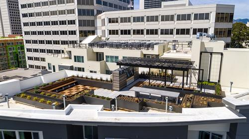 Gallery Image oakland-roof-terrace.jpg