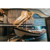 Whaling Museum will reopen February 12
