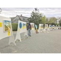 Artists Association of Nantucket Hosts Drive Thru Art Fair Saturday May 8, in Visual Arts Center Parking Lot