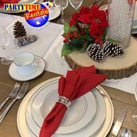 PartyTime Rentals, Inc. - Poughquag