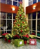 Indoor commercial and residential holiday and event decorating