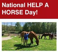 News Release: 4/12/2021 - National Help A Horse Day