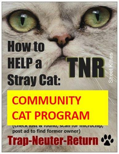 Gallery Image TNR_poster.jpg