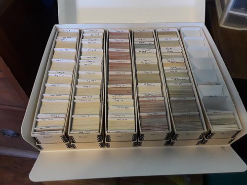 Organized slides in archival storage