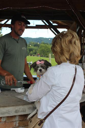 Pet Friendly Bar Service