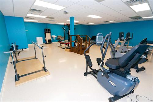 Therapy Gym