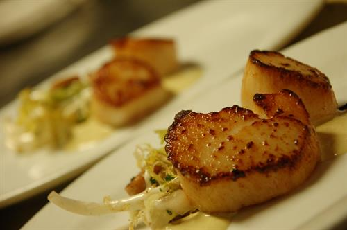 Seared Scallops For Private Dinner