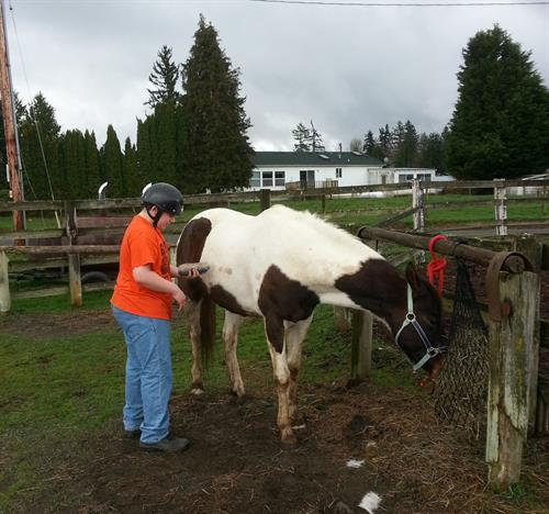 One of our campers with Obi the horse.