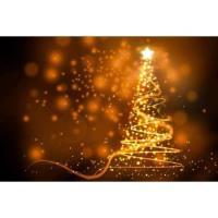 Annual Tree Lighting Celebration