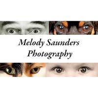 Melody Saunders Photography Networking