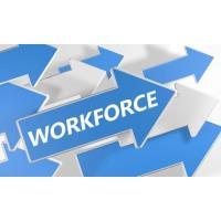 Growing the Workforce
