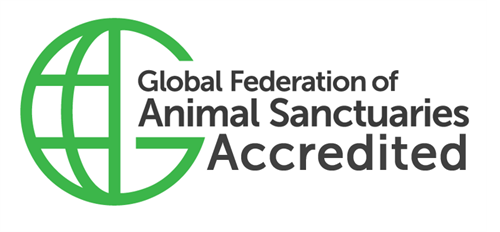 Gallery Image GFAS_Vertical_Accredited.png