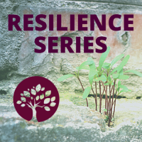 Resilience Series: Strengthen & Protect Your Digital Brand - #2