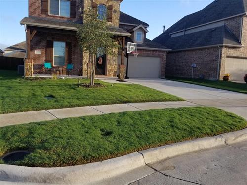 Gallery Image Lawncare_Program-min.jpg