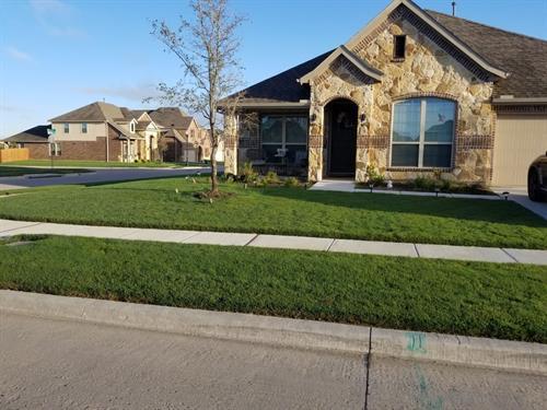 Gallery Image Texas_Weed_Control-min2222.jpg