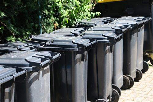 Commercial Trash Bin Cleaning